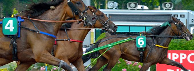 Onextwo Pferderennen